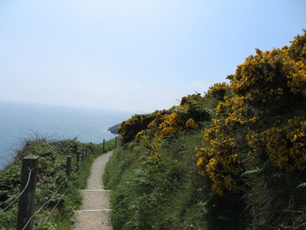 solo hike on the Bray to Greystones trail