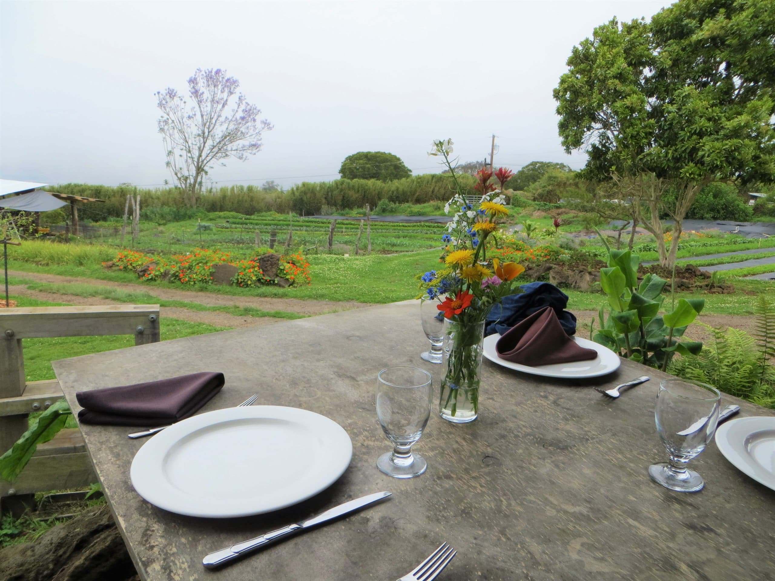 outdoor table at O'o farms overlooking the farm