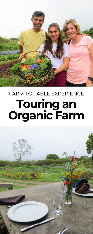 touring_an_organic_farm