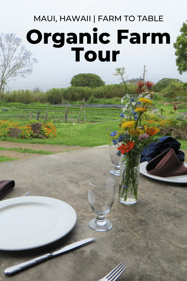 farm to table experience in Maui, Hawaii