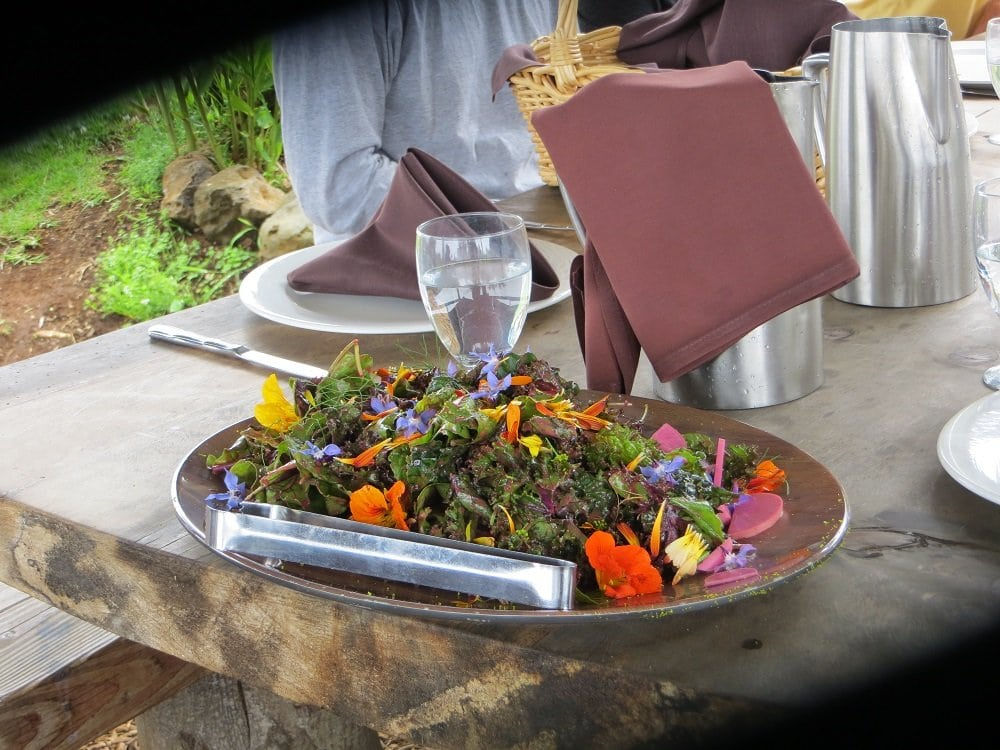 plate of salad greens and edible flowers on outdoor table