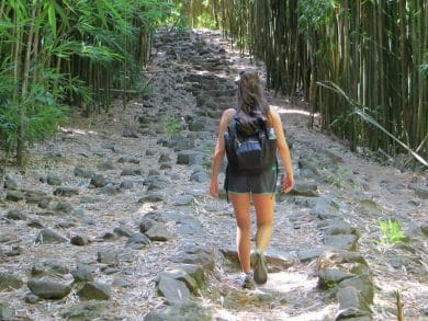 monica nedeff the traveling dietitian walking on a bamboo path in maui hawaii